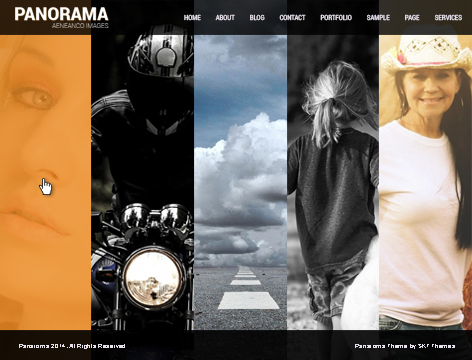 panorama wordpress theme