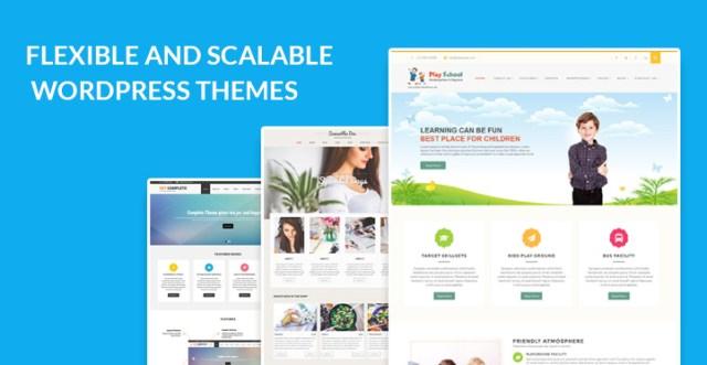flexible scalable WordPress themes