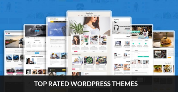 top rated WordPress themes