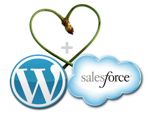 WordPress salesforce integration