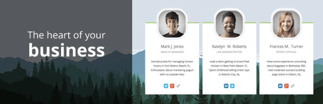 team members WordPress plugin