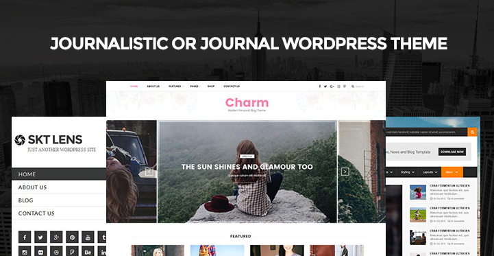 6 Journalistic Or Journal Wordpress Theme For Having Journal Style Sites