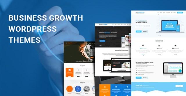 business growth WordPress themes