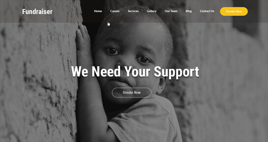 fundraiser WordPress theme