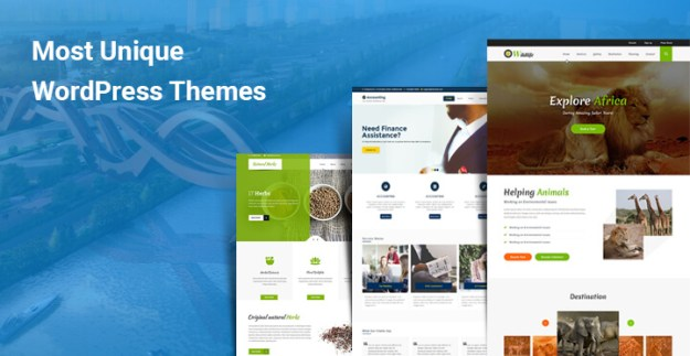 Most Unique WordPress Themes