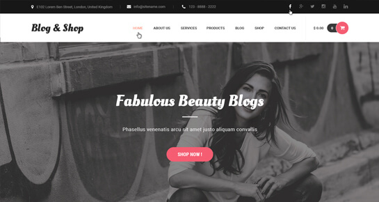 blog shop wordPress themes