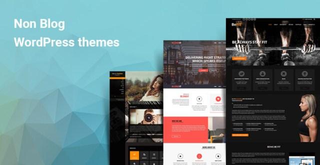 Non blog WordPress themes