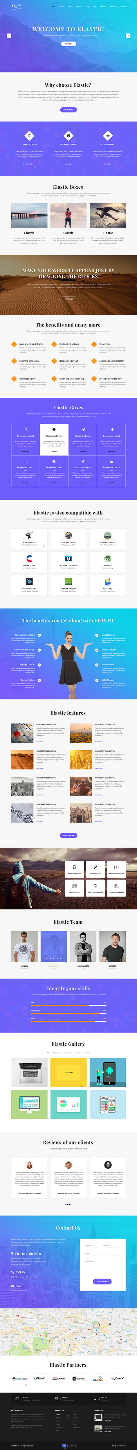 customizable WordPress theme
