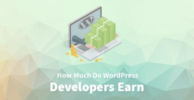 How Much Do WordPress Developers Earn