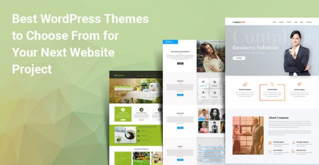 WordPress themes for projects