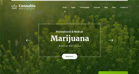 marijuana WordPress theme