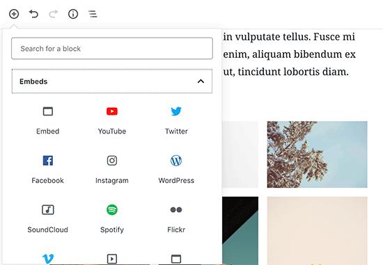 embed videos WordPress editor