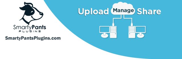 SP Client Download Manager