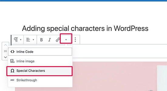 Insert Special Characters plugin