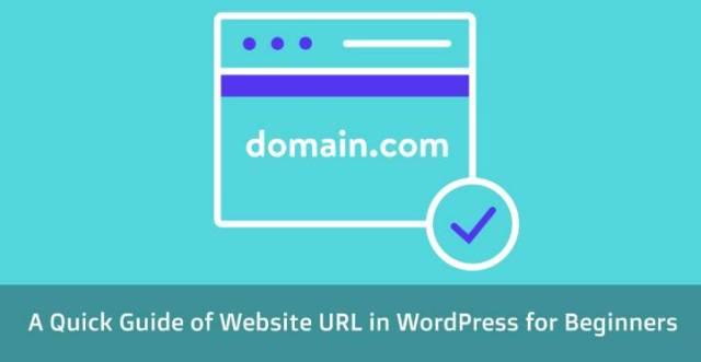 website URL in WordPress
