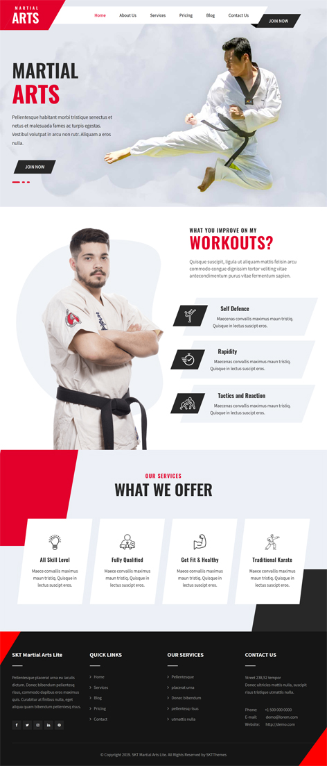free martial arts WordPress theme