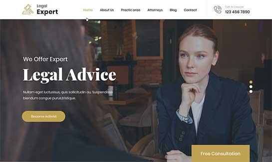 Legal Expert