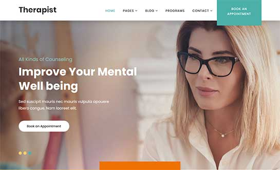 Top 10 Color WordPress Themes 2021 For Your Colorful Websites, Vectribe