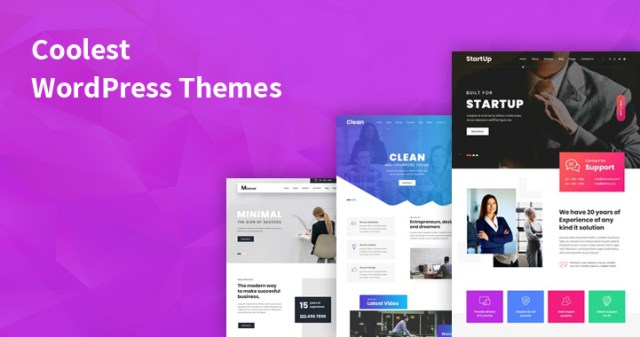 coolest WordPress themes