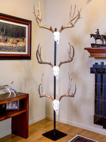 Trophy Tree  Skull Hooker  European Skull Bracket System Skull Hanger Deer Skull Mount Euro