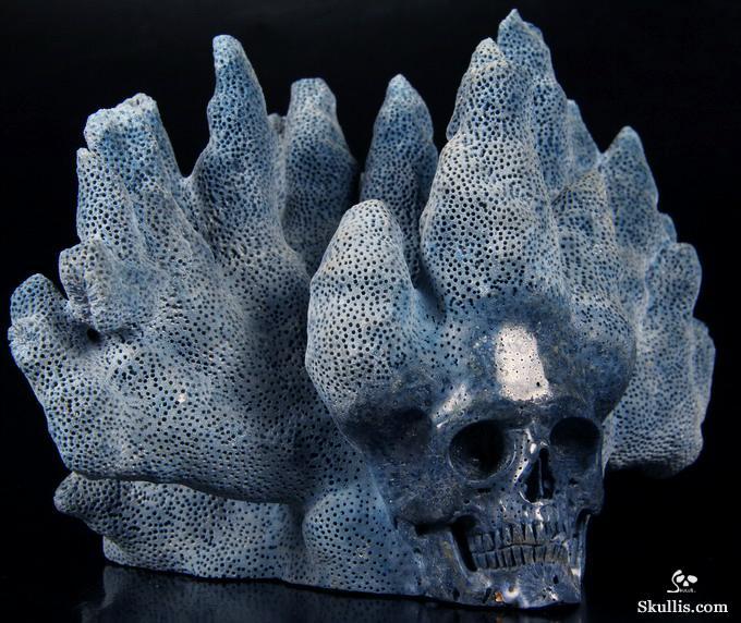 Aug 5 2014 ACSAD A Crystal Skull A Day Reef Keep