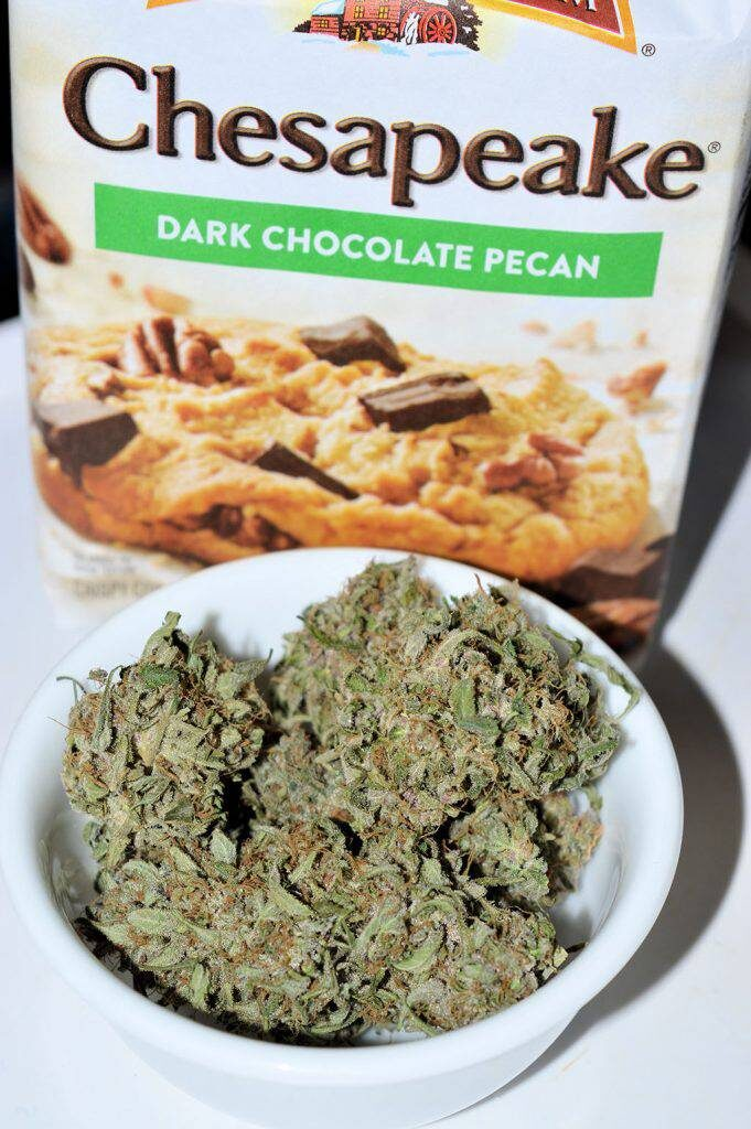 Durban Black with some yummy cookies