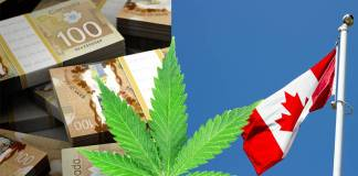 Legal Marijuana Just Right for the Canadian Economy