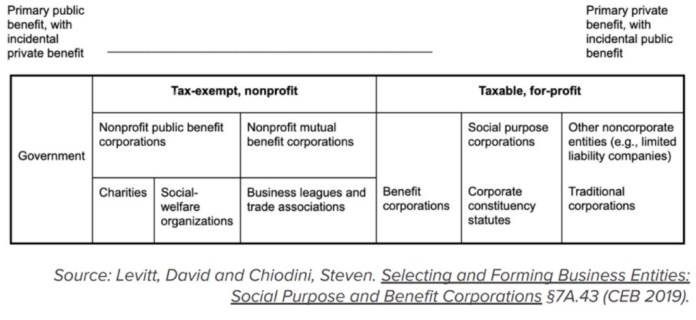 Selecting and Forming Business Entities: Social Purpose and Benefit Corporations