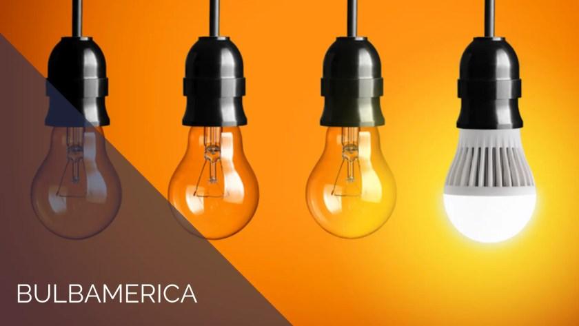 Bulb America lightbulbs case study