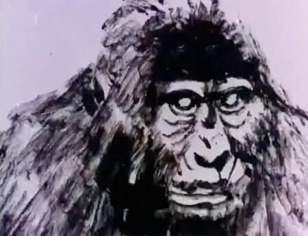 Homenaje a Tarzan (Dir. Rafael Ruiz Balerdi, 1970)