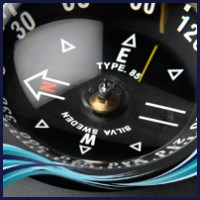 Electronic Compasses