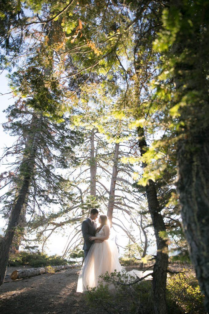 sunshine behind the couple in Yosemite
