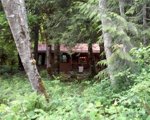 cabin in the woods Baring Washington