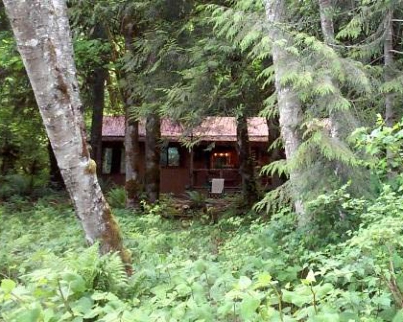 cabin in the woods Baring Washington