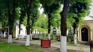 Bellu Cemetery #2