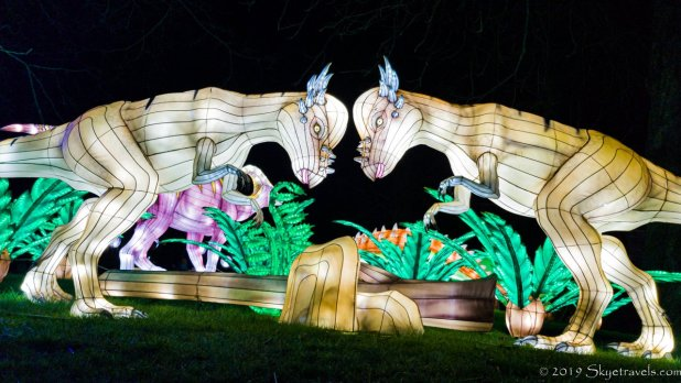 Fighting Dinosaur Lanterns