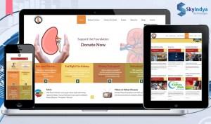 Skyindya Web Design Work - MKF