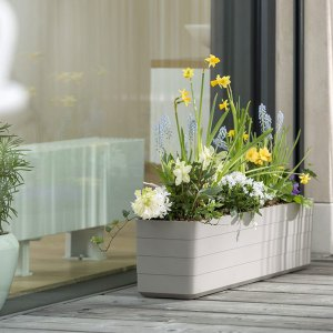Plastia Berberis Self-watering Planter