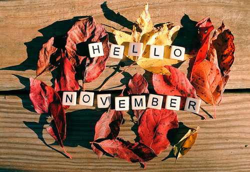 Hello November!  New Hours for Skyline Marina!