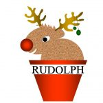 Rudolph's carrots