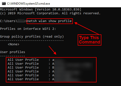 type netsh wlan show profiles command