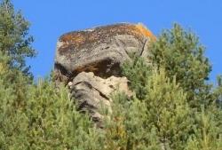 Sfinxul din Bucegi are un frate la Bustea: Calculeaza ruta dintre cele doua monumente!