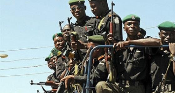 """"""" رويترز """" : خلافات كاميرونية نيجيرية بعد دخول قوات دون تفويض"""