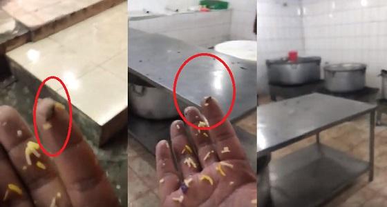 بالفيديو.. بلدية خميس مشيط تغلق مطعما يقدم الأرز بالصراصير