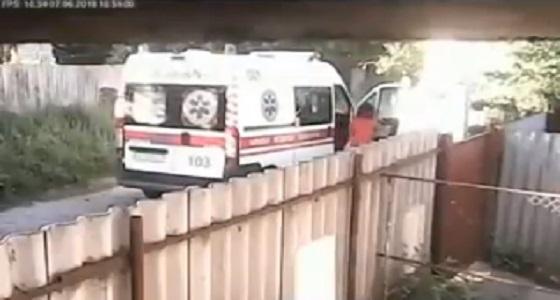 بالفيديو.. كلبان يفتكان بأحد المارة ويسقطانه مصابا