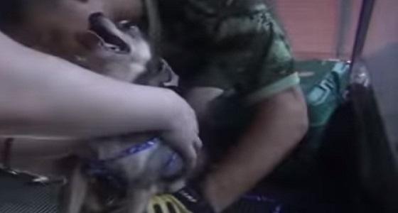 فيديو مروع لسلم كهربائي يبتلع قدم كلب
