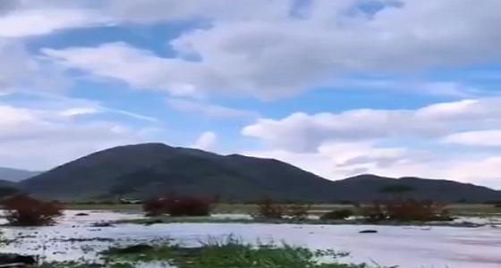 بالفيديو.. الأمطار ترسم لوحة فنية في العيص
