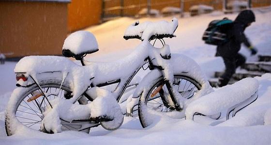 بالصور.. كثافة الثلوج بأوروبا تتسبب في وفاة 17 شخصًا