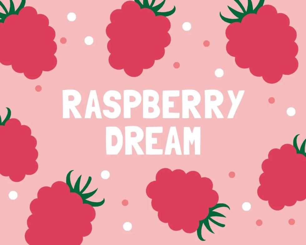 Slab Artisan Fudge - Vegan Raspberry Dream Flavour Graphic