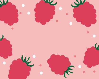 Slab Artisan Fudge - Raspberry & White Choc Flavour Graphic 2